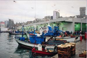 porto-de-vigo-de-santi-pascual